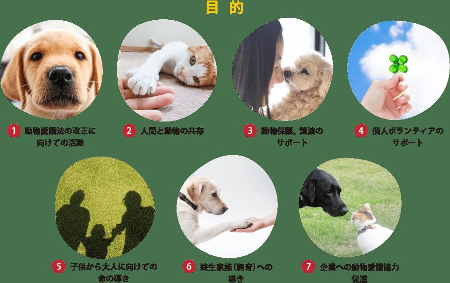 1.動物愛護法の改正に向けての活動 2.人間と動物の共存 3.動物保護、譲渡のサポート 4.個人ボランティアのサポート 5.子供から大人に向けての命の導き 6.終生家族(飼育)への導き 7.企業への動物愛護協力促進